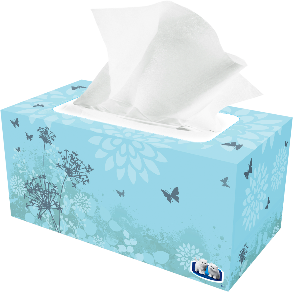 ROYALE® 3‑Ply Facial Tissue (154 sheets) pack