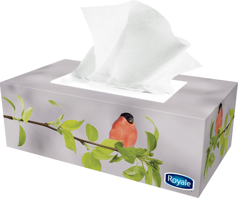 ROYALE® 3‑Ply Facial Tissue (88 sheets) pack