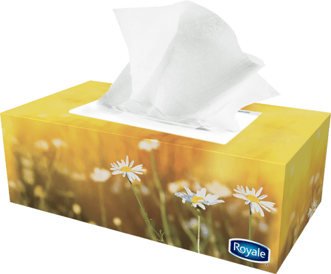 ROYALE® 2‑Ply Facial Tissue (126 sheets)