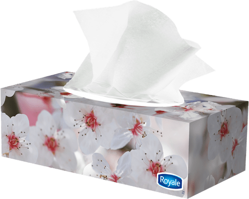 ROYALE® 3‑Ply Facial Tissue (72 sheets)